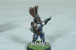 Blood Bowl Imperial Nobility Dallas Cowboys themed Painted Team & Star Player